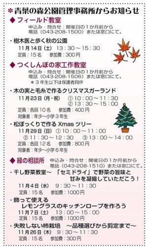 Photo_20201019183201
